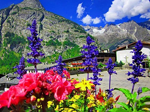 Village Near Mont Blanc -Oil Painting On Canvas Modern Wall Art Pictures For Home Decoration Wooden Framed (20X16 Inch, Framed)