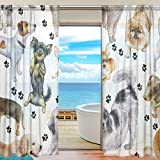 SEULIFE Window Sheer Curtain, Cute Animal Dog Paw Print Black Voile Curtain Drapes for Door Kitchen Living Room Bedroom 55x78 inches 2 Panels
