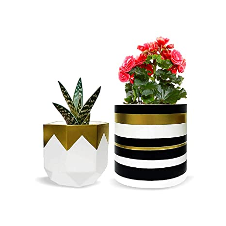 75d1e01ef6 Pack of 2 White Pretty Ceramic Flower Pots Garden Succulent Cactus Planter  with Drainage Hole,