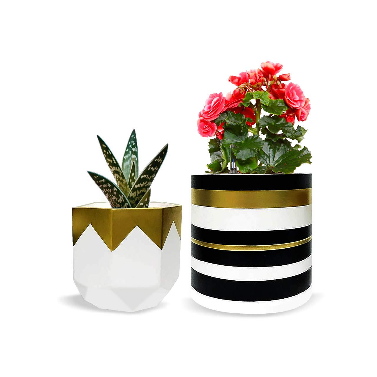 c21039a702f418 Pack of 2 White Pretty Ceramic Flower Pots Garden Succulent Cactus Planter  with Drainage Hole