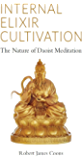 Internal Elixir Cultivation: The Nature of Daoist Meditation (English Edition)