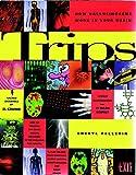 Trips: How Hallucinogens Work in Your Brain