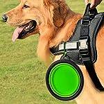 Sabuy Collapsible Dog Travel Bowl 13