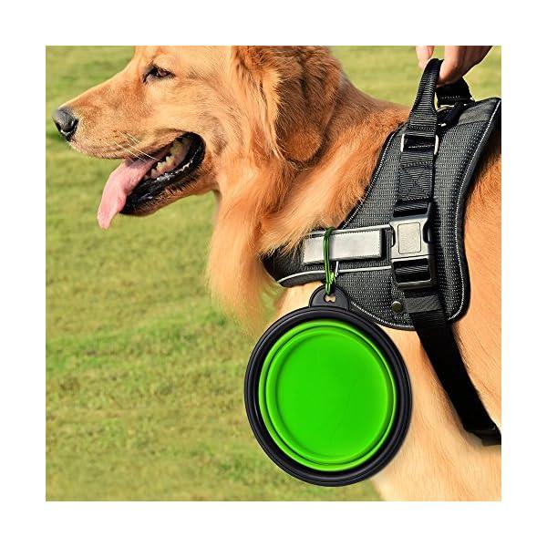 Sabuy Collapsible Dog Travel Bowl 6