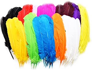 Everyshine 120 Pcs Turkey Quill Feathers 10-12 inches Mixed Colors