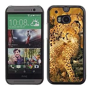 Stuss Case / Funda Carcasa protectora - Leopard Africa Cub Nature Summer Mother - HTC One M8
