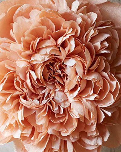 The Fine Art of Paper Flowers: A Guide to Making Beautiful and Lifelike Botanicals by Watson-Guptill (Image #10)