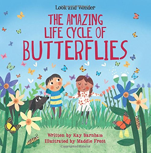 Amazing Life Cycles (The Amazing Life Cycle of Butterflies (Look and Wonder))