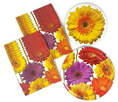 Amazon.com: Party Creations Summer Paper Plates And Daisy Theme ...