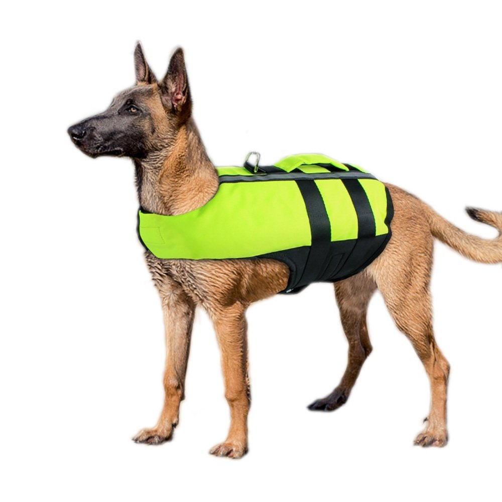 M Dog Life Jackets for Swimming Dogs Life Vests Swimsuits for Small Medium Large Dogs, Buoyant, Secure & Reflective, Fluorescent Green (M)
