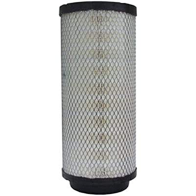 Luber-finer LAF9101 Heavy Duty Air Filter: Automotive
