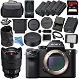 Sony ILCE7RM2/B Alpha a7R II Mirrorless Digital Camera (Body Only) + Sony FE 12-24mm f/4 G Lens SEL1224G + 256GB SDXC Card + NP-FW50 Lithium Ion Battery + External Rapid Charger Bundle