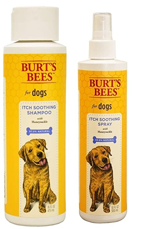 542e36b6b Amazon.com  Burt s Bees For Dogs Itch Soothing Shampoo and Spray ...