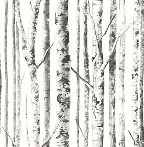 Birch Tree White Wallpaper Black Pearly Ivory Background Silver Gray Bark Markings ()