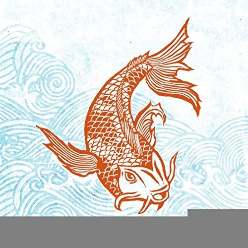 Amazon Com N Sunforest Canvas Picture Frame Koi Fish Animal Painting On Canvas Fashion Wall Art Decoration For Teens 12 X 12 Posters Prints