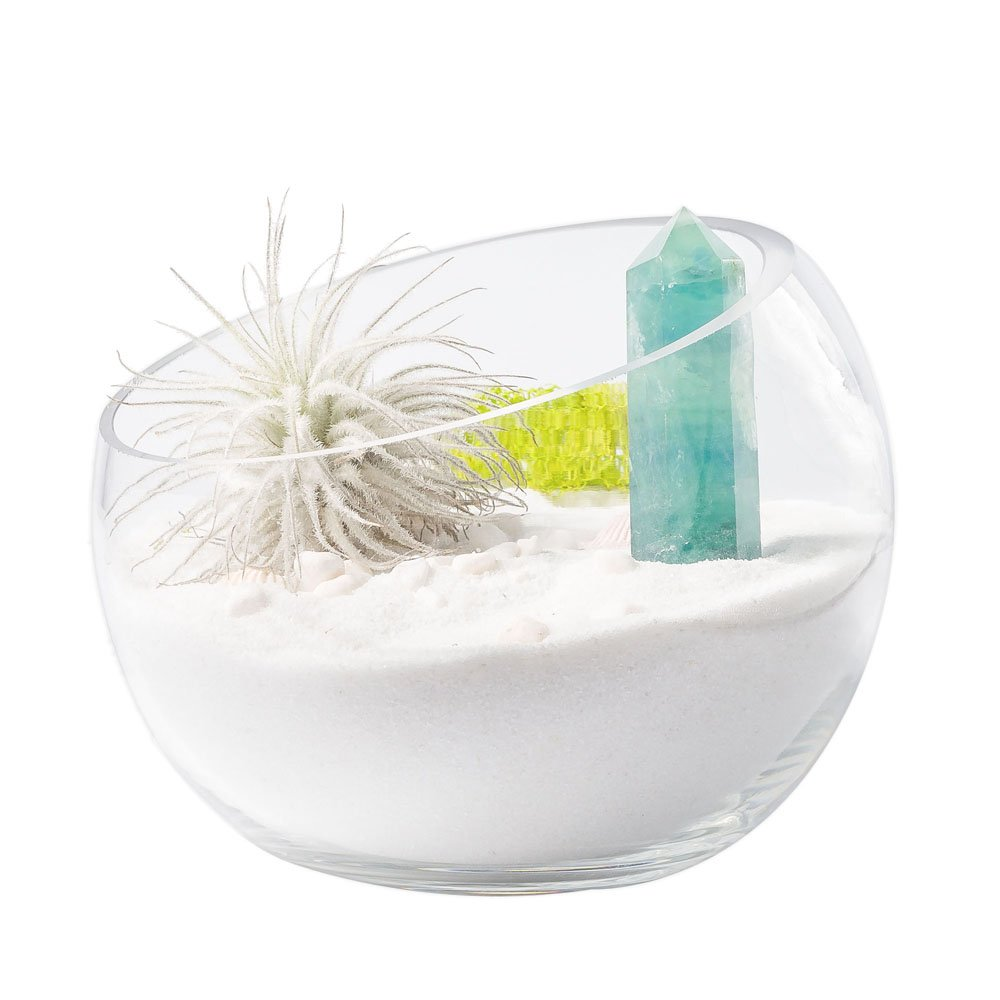 Mkono Air Plant Terrarium Globe 5 7/8Inch Succulent Glass Planter Container Bowl Shaped