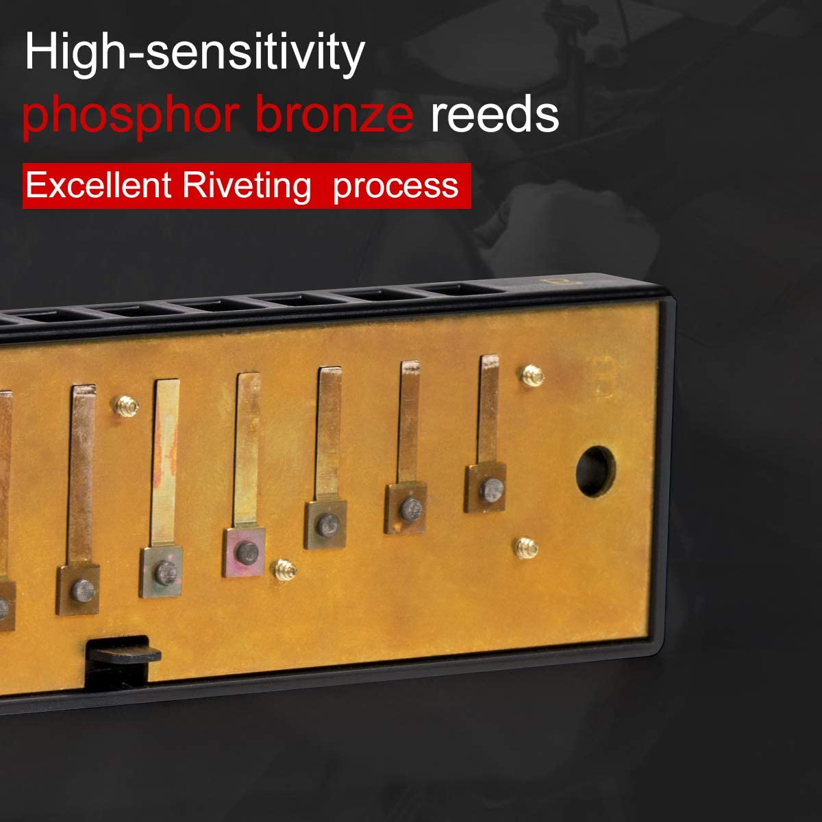7 Tone 10 Holes Harmonicas with Hard Case AKLOT Blues Harmonica Set Key of A,B,C,D,E,F,G