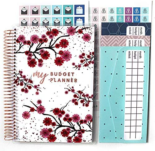 Budget Planner Sticker Planner Agenda Stickers  Credit Cards sticker EXPENSES