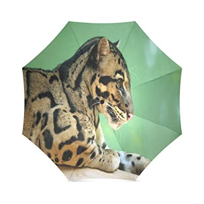 Custom Clouded Leopard Compact Travel Windproof Rainproof Foldable Umbrella