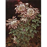 Canvas Prints Of Oil Painting ' Huang Shan,Chrysanthemums,20th Century' 10 x 13 inch / 25 x 34 cm , High Quality Polyster Canvas Is For Gifts And Dining Room, Laundry Room And Powder Room Decoration