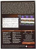 Steinberg 46297 Dorico Notation Software (Retail Box Version)