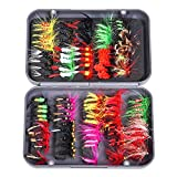OriGlam 【Happy Shopping Day】 100pcs Fly Fishing Flies Kit Fly Fishing Lures, 20 Colors Dry/Wet Flies Butterfly Bait Hook for Bass Salmon Trout with Fly Case Box