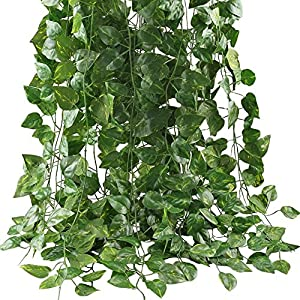 Hecaty 12 Strands Artificial Fake Grape Vines with 3 Strings Grapes, Hanging Plant Large Leaves Garland for Wedding Party Store Home Decor Indoor Outdoors 12