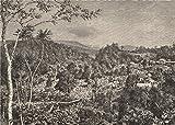 Coffee Plantation, Preang Regencies, Java. Indonesia. East Indies - 1885 - old print - antique print - vintage print - art picture prints of Indonesia