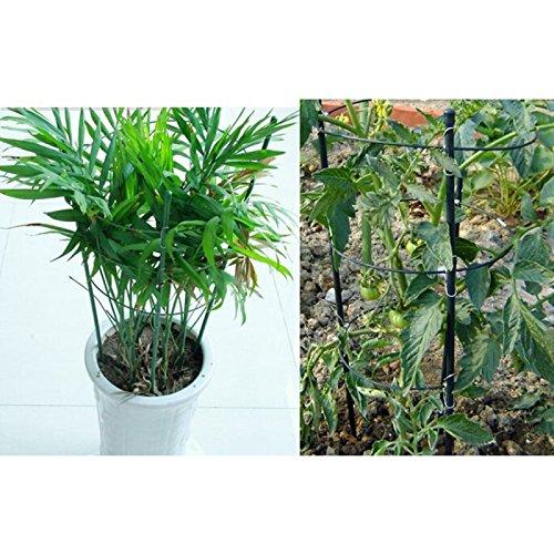 Wewoo Jardinería 2 pcs Escalada Rattan Planta Titulaire Redonda en ...