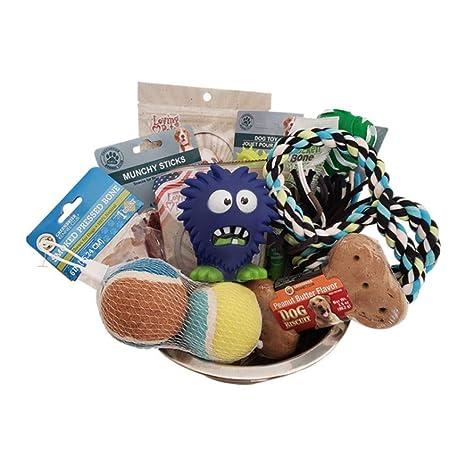 Amazon.com: Paws - Cesta de regalo para perro, para perros ...