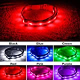 Blazin' Safety LED Dog Collar – USB Rechargeable with Water Resistant Flashing Light – XSmall Red