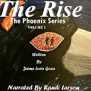 The Rise Audiobook