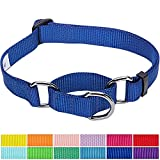 #9: Blueberry Pet 12 Colors Safety Training Martingale Dog Collar, Royal Blue, Large, Heavy Duty Nylon Adjustable Collars for Dogs