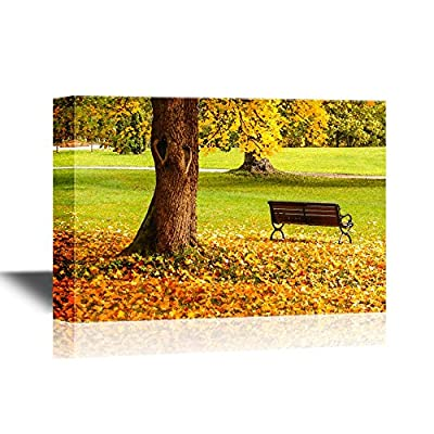 Bench and Oak in City Park in The Autumn, That's 100% USA Made, Stunning Portrait