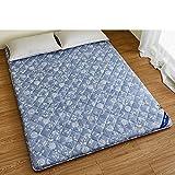 DHWJ WCCT Tatami mattress,Double bed mat,Folding mat-D 100x200cm(39x79inch)