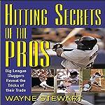 Hitting Secrets of the Pros | Wayne Stewart