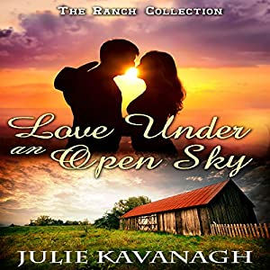 Love Under an Open Sky Audiobook