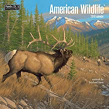 American Wildlife 2018 Monthly Wall Calendar 12 x 12 Inches - Includes One Sheet of 240 Reminder Stickers