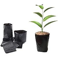 ADLOASHLOU 100 Bolsas de Plástico Engrosadas para Guardería para Plantas, Bolsas de Plantación de Plántulas de Flores Y…