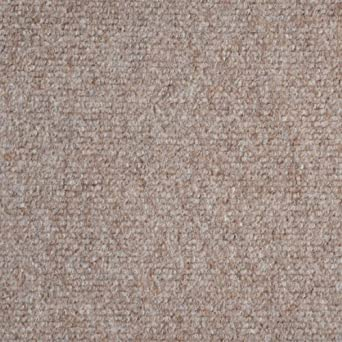 Amazon.com: Indoor/Outdoor Carpet/Rug - Beige - 6\' x 10\' with ...