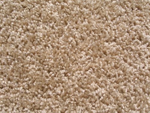 8'x8' Beige Area Rug. FRIEZE plush textured CARPET for residential or commercial use. Approximately 1/2