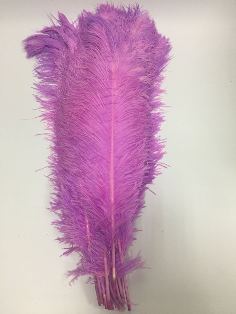MELADY Pack of 100pcs 25~27inches Natural Ostrich Feathers Perfect for Home Wedding Party Decoration (Lavender)