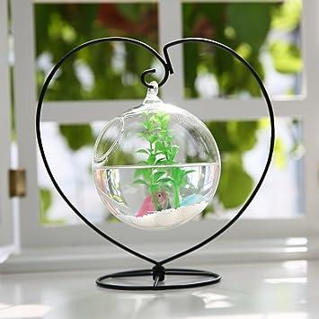 Jiangu - pecera creativa, cristal para colgar tanque de peces transparente, pecera suculenta, pecera pequeña de cristal, mini pecera: Amazon.es: Productos ...