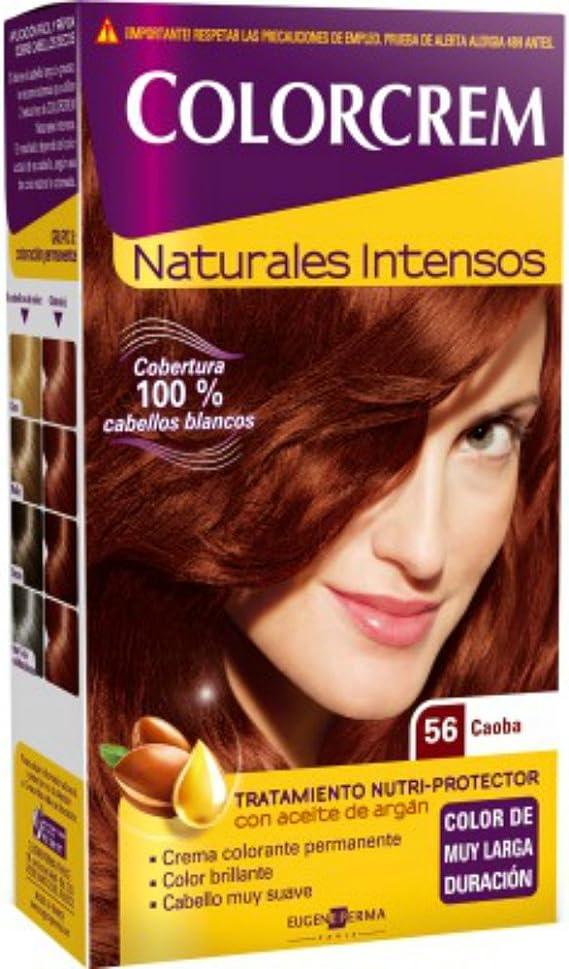 COLORCREM TINTE 56 -CAOBA: Amazon.es: Belleza