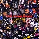 Second Coming [VINYL]