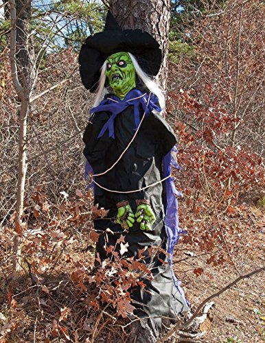 Treehugger Costume (Tree Hugger Witch Prop)