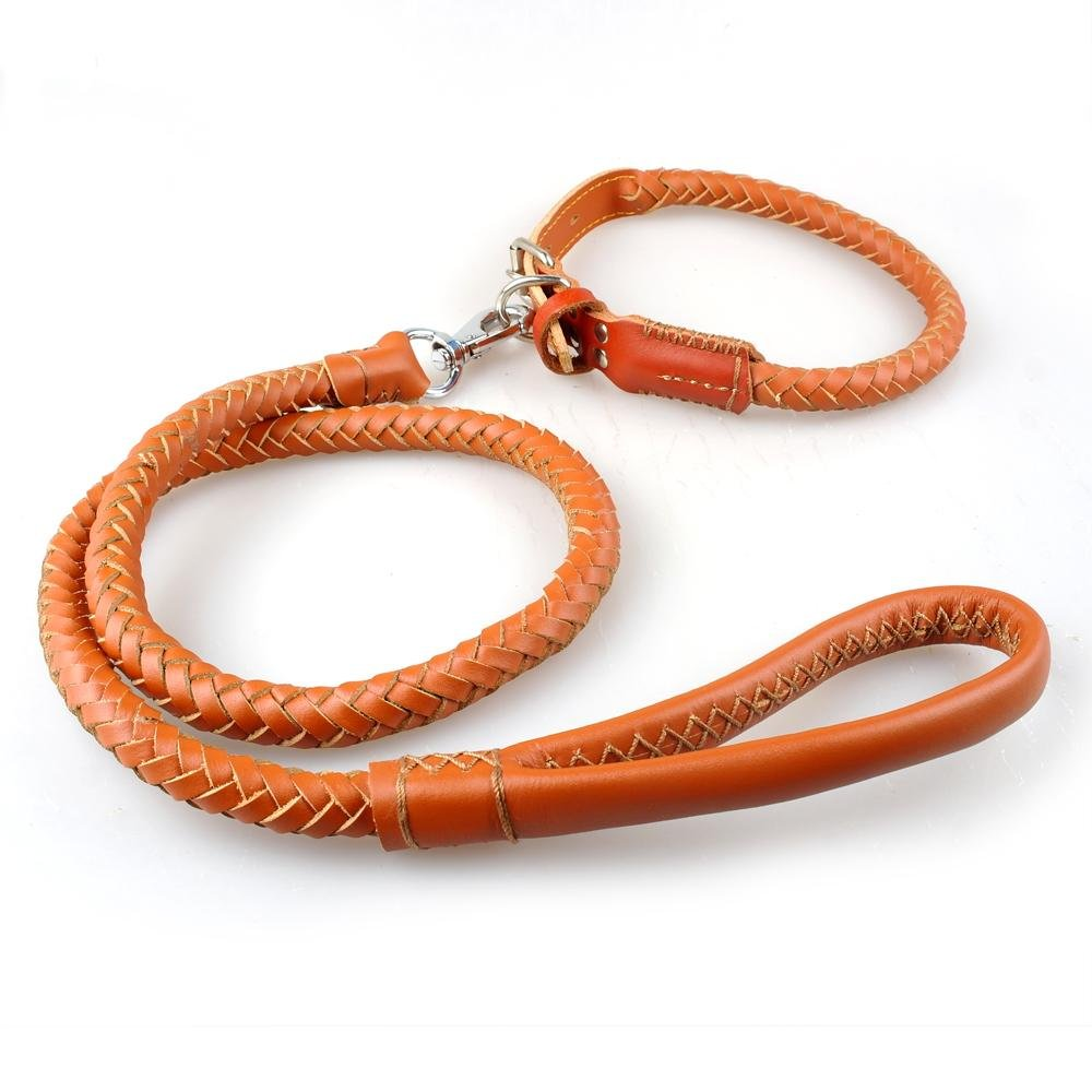 Brown L Brown L Buildent(TM)Braided Rolled Genuine Leather Dog Pet Collars and leash set Adjustable for Medium Dogs