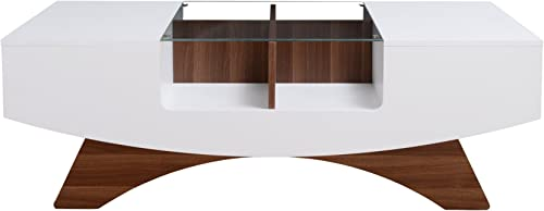 ioHOMES Markham Contemporary 2-Drawer Coffee Table