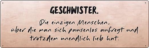 METALLSCHILD Blechschild GESCHWISTERLIEBE Bruder Schwester Familie Geschenk