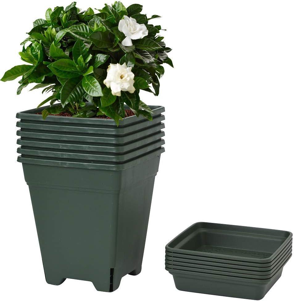 6 Packs 1 Gallon Square Nursery Pot with Saucers Garden Flower Pots Plant Container Plant Plastic Planter Plants Starter Vegetable Planters Indoor Planting Outdoor Potting Seed Grower containers